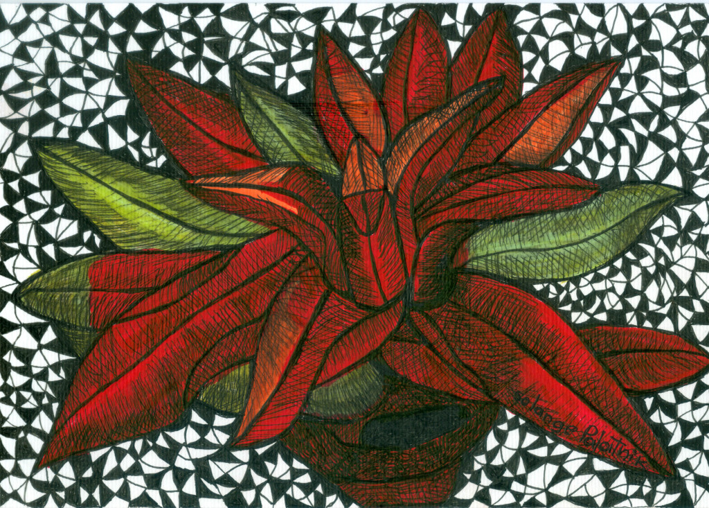 Desenho 09