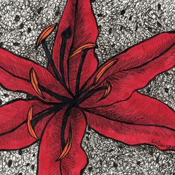 Desenho 02